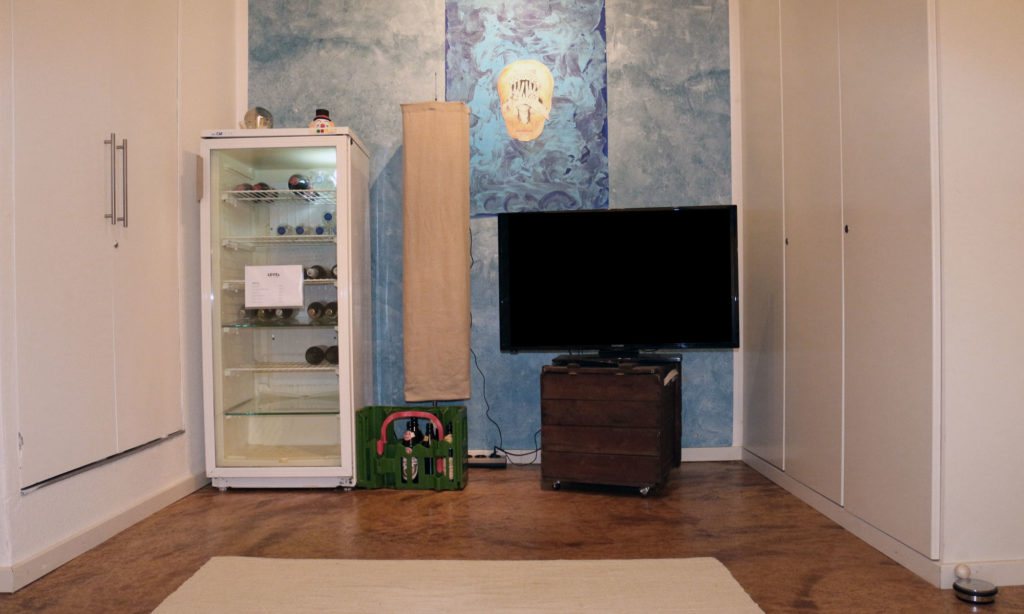 Frontglas Kühlschrank und Fernesher